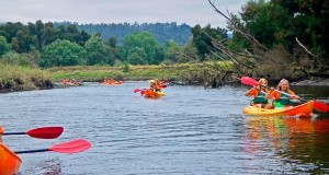 Kayak Natureza no Rio Minho